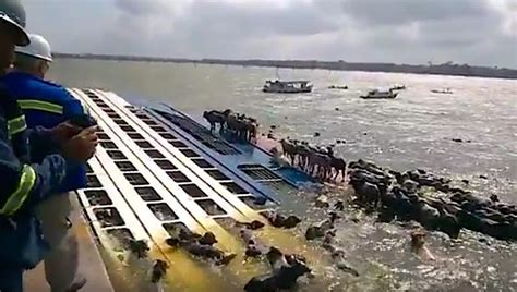 Thousands of Cattle May Have Died After Livestock Carrier