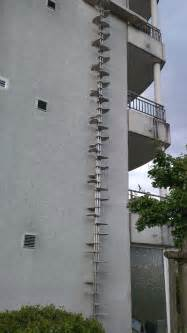 These cat ladders found in Switzerland are pretty epic