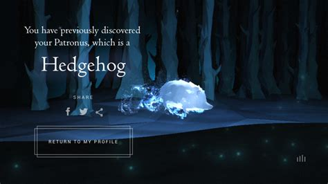 My Pottermore Patronus Is A Hedgehog And This Is How I