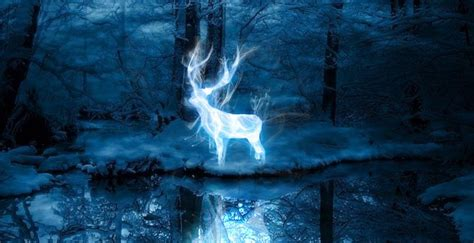 What's Your 'Harry Potter' Patronus? - Heads Up by Boys' Life